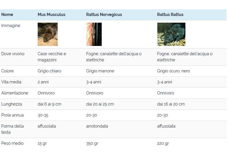 Screenshot_2018-11-09 Lotta a topi e ratti - Genova Disinfestazione